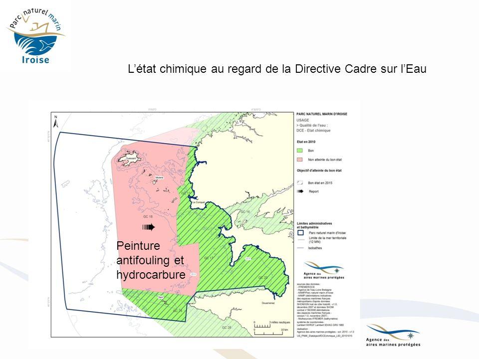 Peinture antifouling et hydrocarbure Létat chimique au regard de la Directive Cadre sur lEau