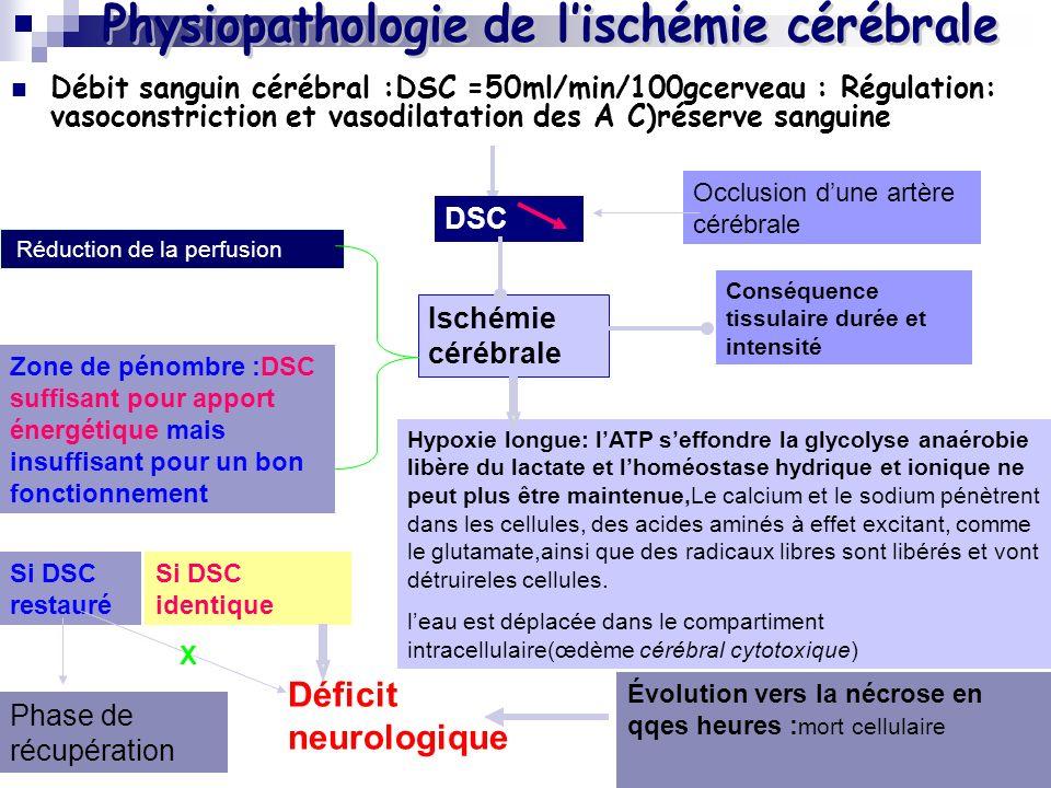 Débit sanguin cérébral :DSC =50ml/min/100gcerveau : Régulation: vasoconstriction et vasodilatation des A C)réserve sanguine Occlusion dune artère cérébrale DSC Conséquence tissulaire durée et intensité Réduction de la perfusion Ischémie cérébrale Zone de pénombre :DSC suffisant pour apport énergétique mais insuffisant pour un bon fonctionnement Déficit neurologique Si DSC identique Si DSC restauré Évolution vers la nécrose en qqes heures : mort cellulaire Phase de récupération Hypoxie longue: lATP seffondre la glycolyse anaérobie libère du lactate et lhoméostase hydrique et ionique ne peut plus être maintenue,Le calcium et le sodium pénètrent dans les cellules, des acides aminés à effet excitant, comme le glutamate,ainsi que des radicaux libres sont libérés et vont détruireles cellules.