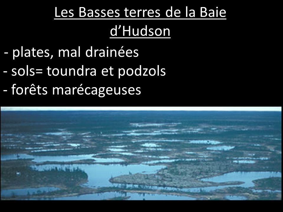 Les Basses terres de la Baie dHudson - plates, mal drainées - sols= toundra et podzols - forêts marécageuses