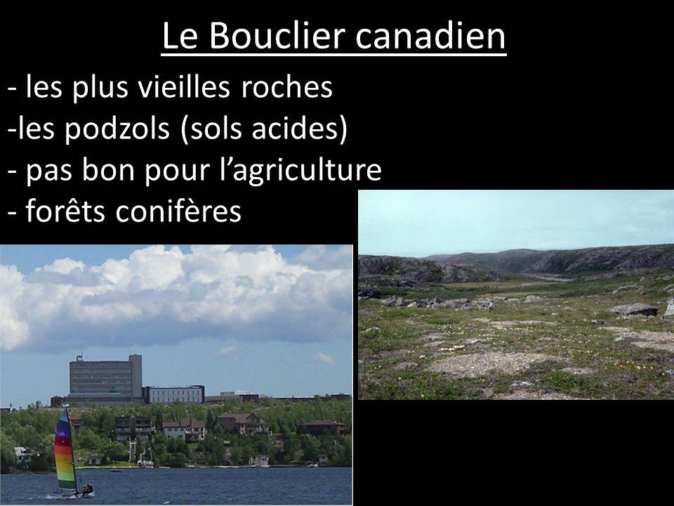 Les Basses terres des Grands Lacs et du St. Laurent