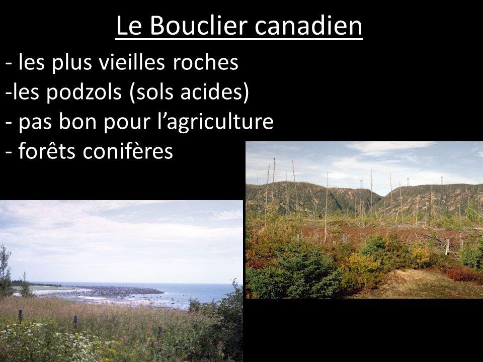 Le Bouclier canadien - les plus vieilles roches -les podzols (sols acides) - pas bon pour lagriculture - forêts conifères