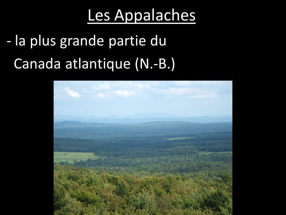 Les Appalaches - vieilles montagnes (+/- 1000 m en hauteur) - lérosion= ondulées, pas pointues