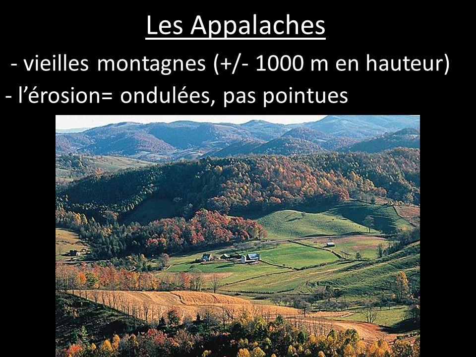 Les Appalaches - sols fertiles - les forêts feuillus et conifères