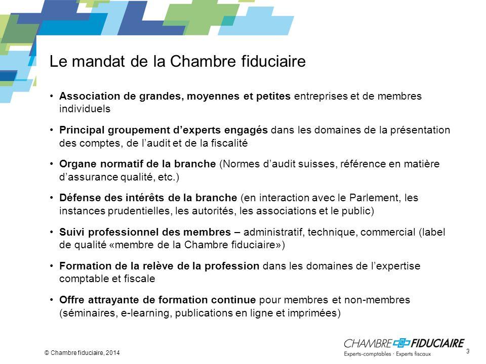 Le mandat de la Chambre fiduciaire Association de grandes, moyennes et petites entreprises et de membres individuels Principal groupement dexperts eng