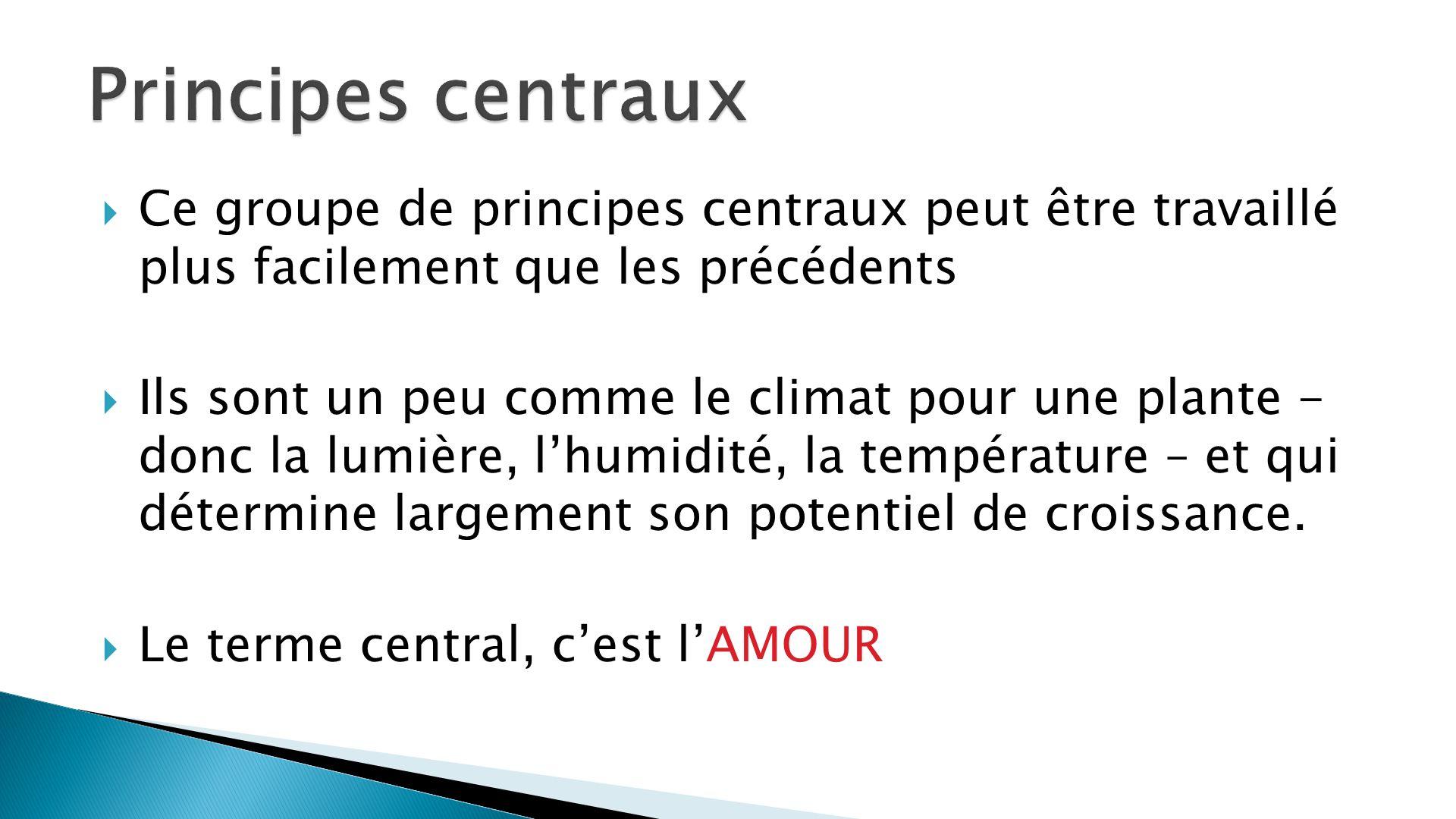 Ce groupe de principes centraux peut être travaillé plus facilement que les précédents Ils sont un peu comme le climat pour une plante - donc la lumiè