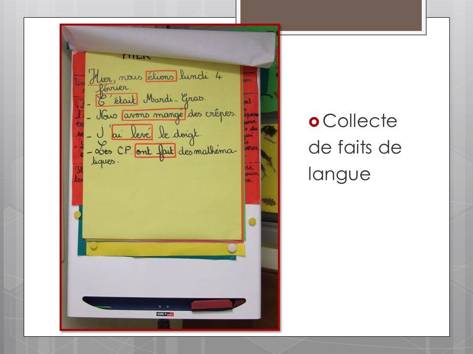 Collecte de faits de langue
