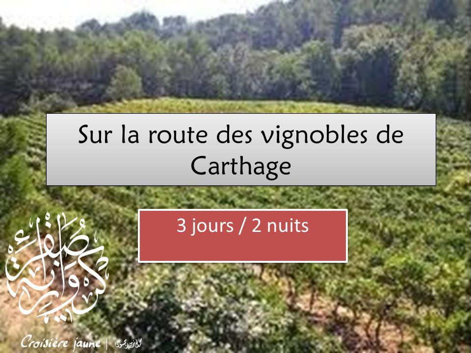 Sur la route des vignobles de Carthage 3 jours / 2 nuits
