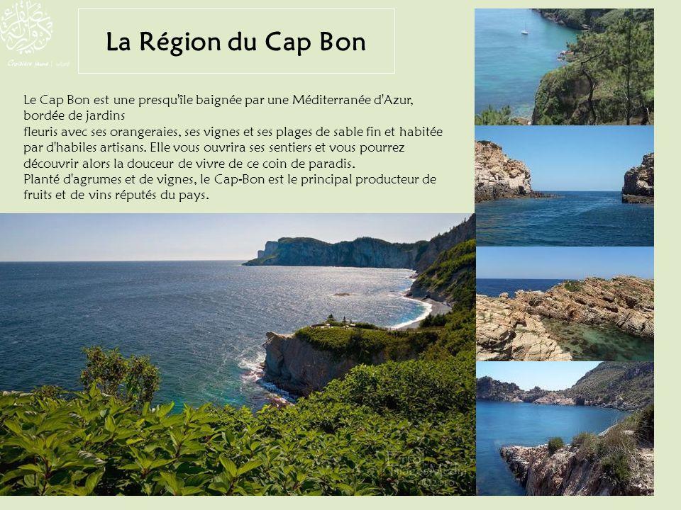 Le Cap Bon est une presqu'île baignée par une Méditerranée d'Azur, bordée de jardins fleuris avec ses orangeraies, ses vignes et ses plages de sable f