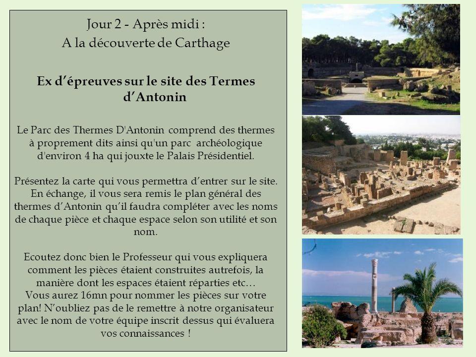Jour 2 - Après midi : A la découverte de Carthage Ex dépreuves sur le site des Termes dAntonin Le Parc des Thermes D'Antonin comprend des thermes à pr