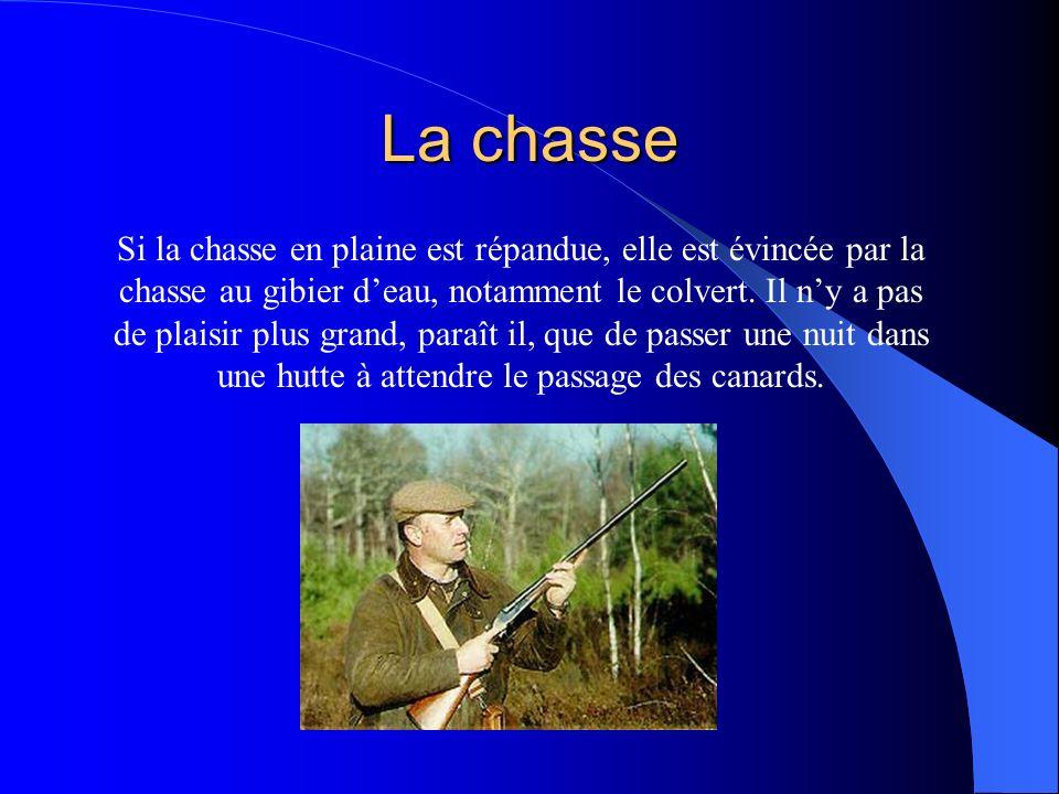 La chasse Si la chasse en plaine est répandue, elle est évincée par la chasse au gibier deau, notamment le colvert.