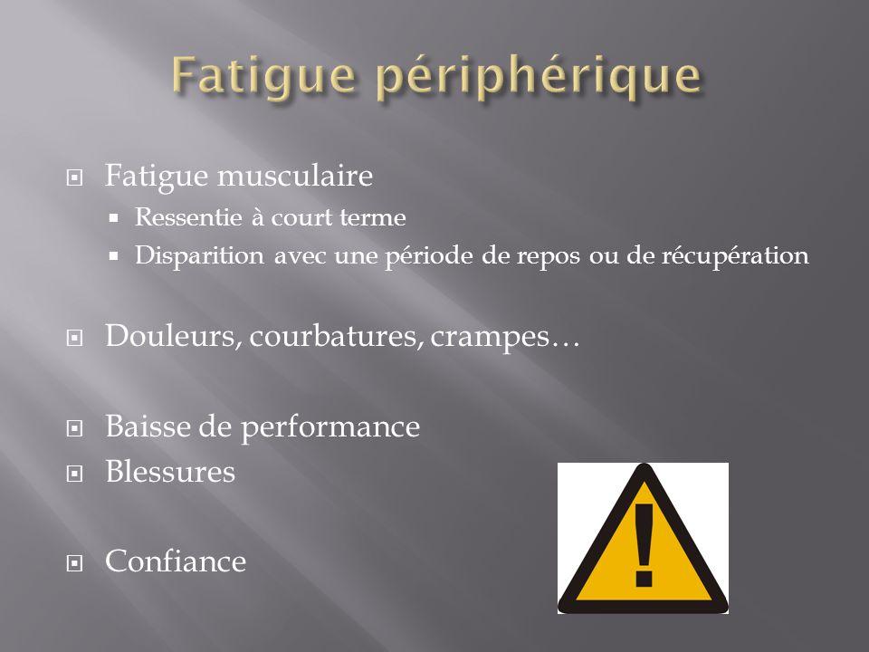 Fatigue musculaire Ressentie à court terme Disparition avec une période de repos ou de récupération Douleurs, courbatures, crampes… Baisse de performa