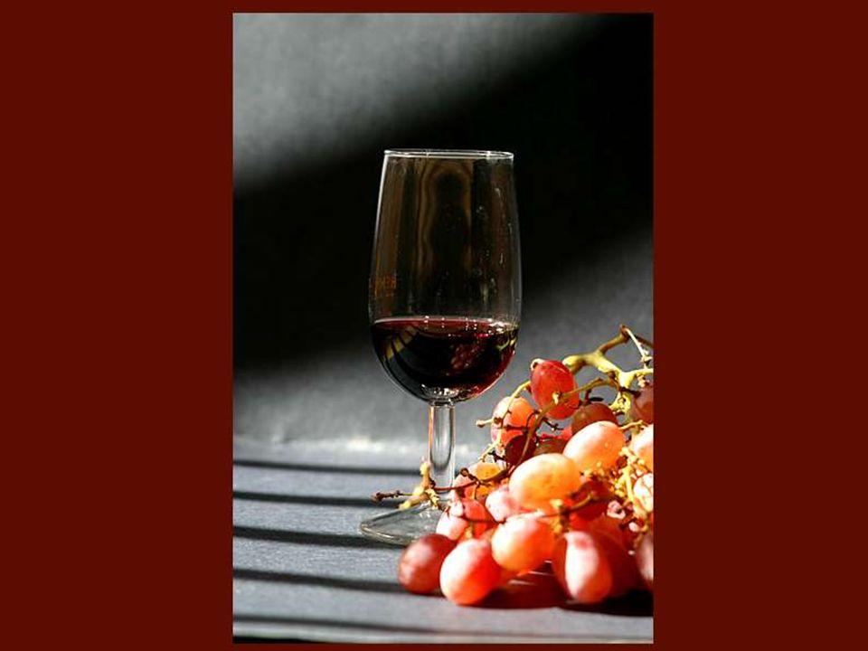 Je suis entrée dans le monde du vin sans autre formation professionnelle qu une gourmandise certaine des bonnes bouteilles.
