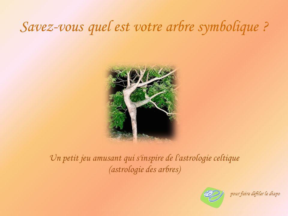 Un petit jeu amusant qui s inspire de l astrologie celtique (astrologie des arbres) Savez-vous quel est votre arbre symbolique .