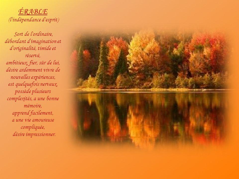 CYPRÈS (la fidélité) Fort, musclé, adaptable, prend ce que la vie a à offrir, content, optimiste, a soif d argent et de reconnaissance, déteste la solitude, amant passionné qui ne peut être satisfait, est fidèle, s emporte facilement, est indiscipliné, pendant et négligent.