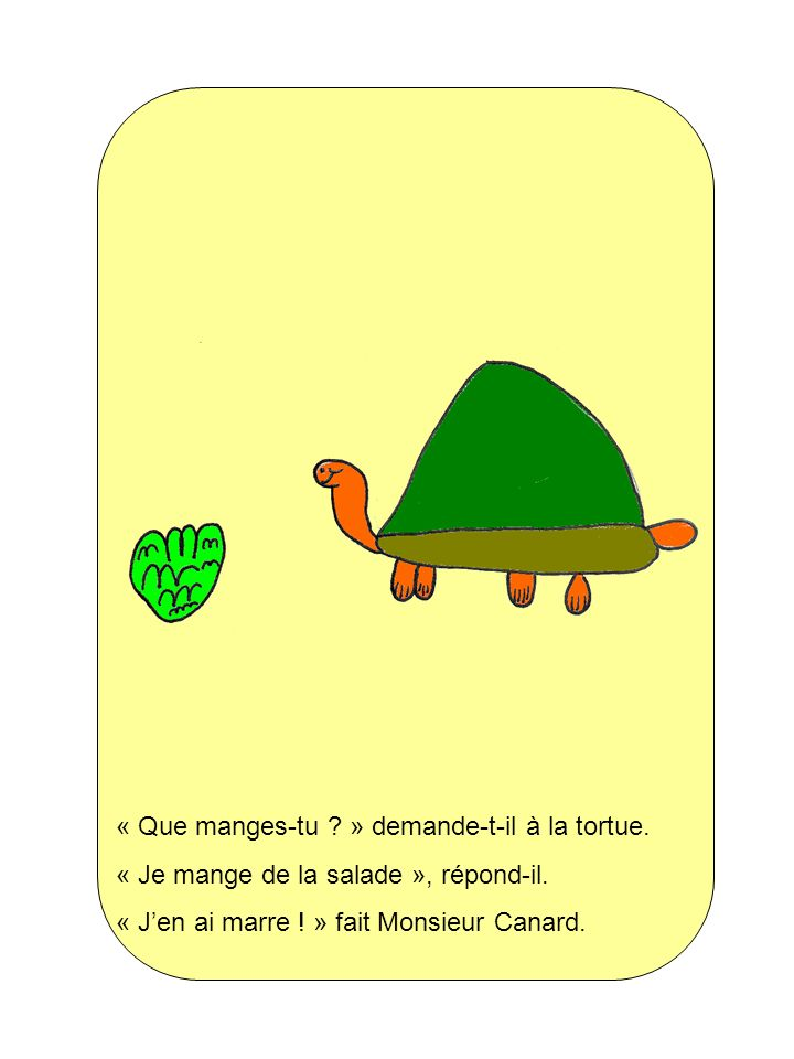 « Que manges-tu ? » demande-t-il à la tortue. « Je mange de la salade », répond-il. « Jen ai marre ! » fait Monsieur Canard.