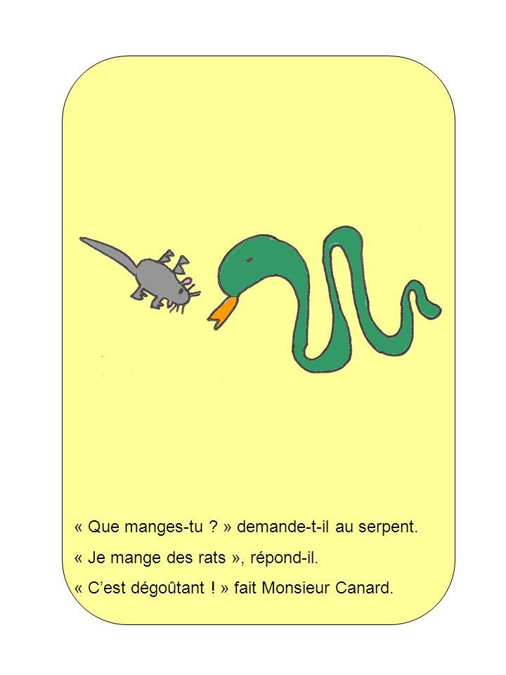 « Que manges-tu ? » demande-t-il au serpent. « Je mange des rats », répond-il. « Cest dégoûtant ! » fait Monsieur Canard.