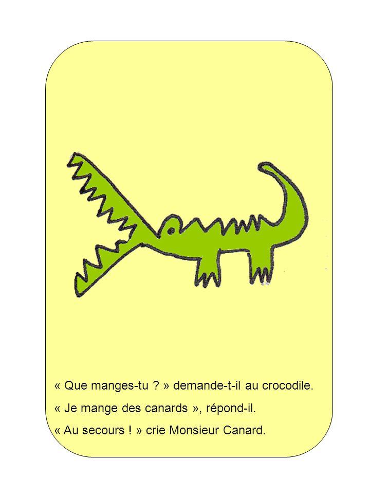 « Que manges-tu ? » demande-t-il au crocodile. « Je mange des canards », répond-il. « Au secours ! » crie Monsieur Canard.