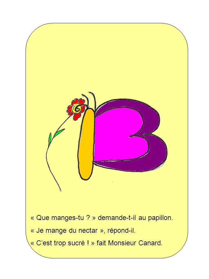 « Que manges-tu ? » demande-t-il au papillon. « Je mange du nectar », répond-il. « Cest trop sucré ! » fait Monsieur Canard.