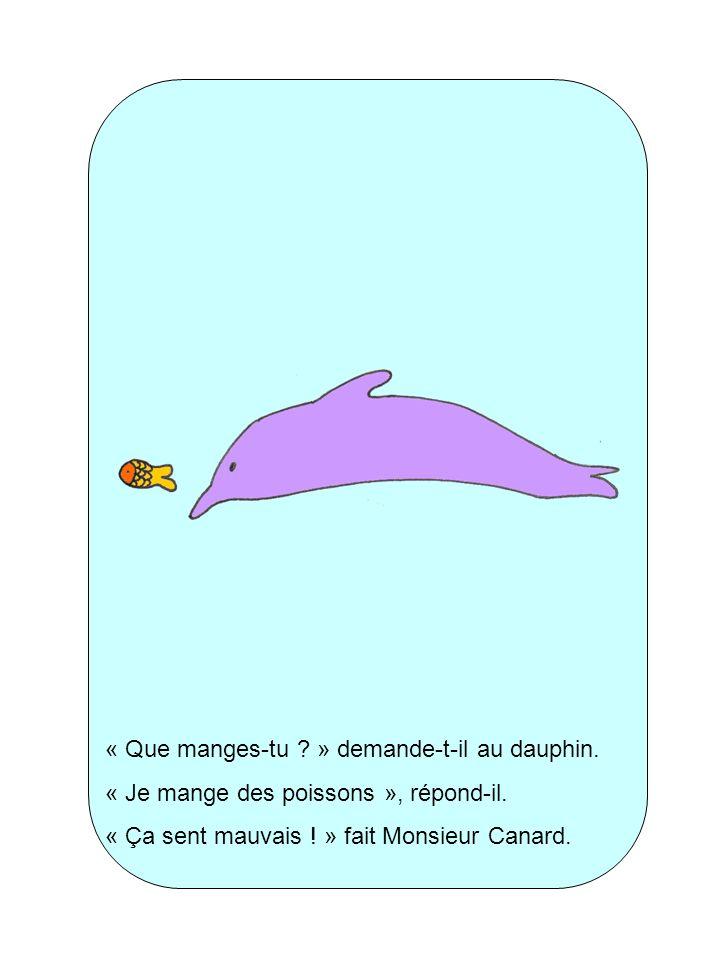 « Que manges-tu ? » demande-t-il au dauphin. « Je mange des poissons », répond-il. « Ça sent mauvais ! » fait Monsieur Canard.