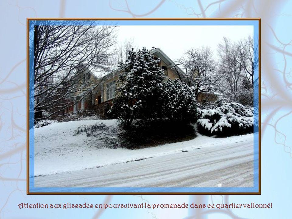 Il a neigé Il a neigé la veille et, tout le jour, il gèle. Le toit, les ornements de fer et la margelle Du puits, le haut des murs, les balcons, le vi