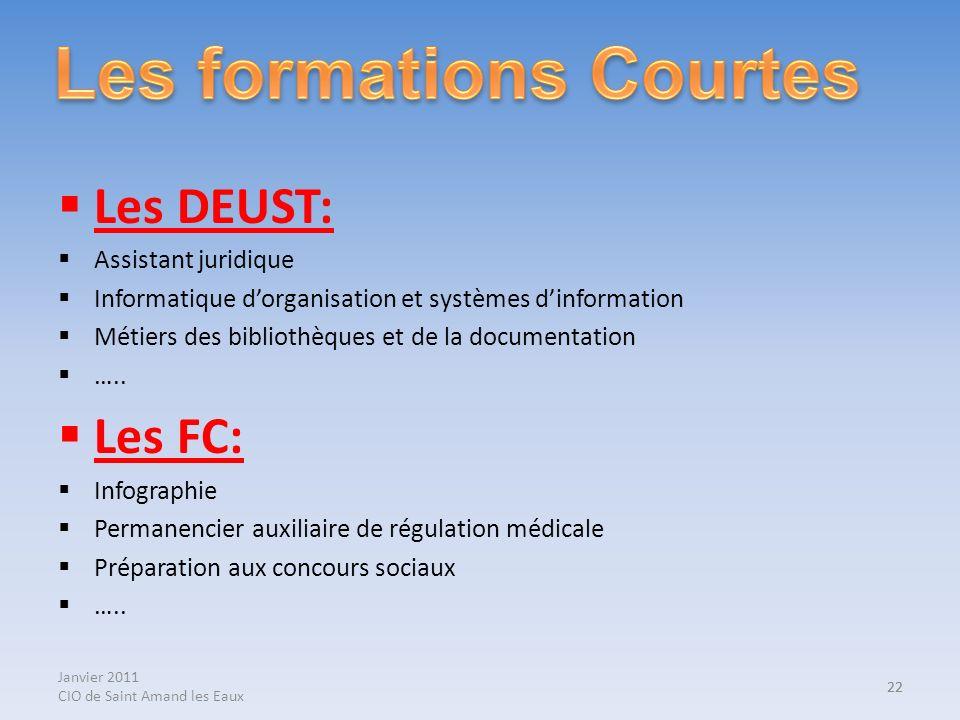 Janvier 2011 CIO de Saint Amand les Eaux 22 Les DEUST: Assistant juridique Informatique dorganisation et systèmes dinformation Métiers des bibliothèqu