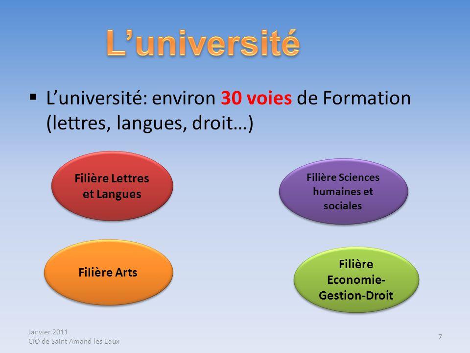 7 Luniversité: environ 30 voies de Formation (lettres, langues, droit…) 7 Filière Lettres et Langues Filière Sciences humaines et sociales Filière Art