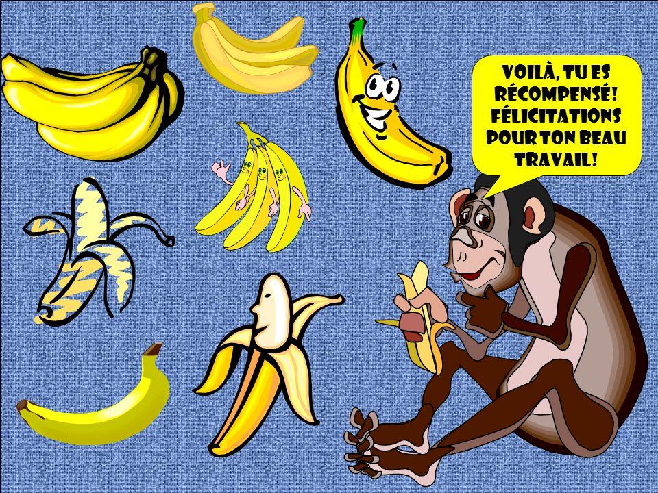 Crois-tu que tu mérites une banane en cadeau? Si oui, clique sur la coccinelle, si non sur lalligator!