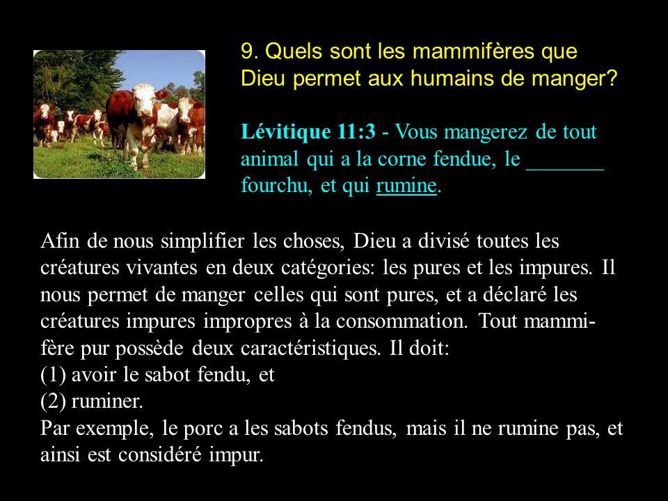9. Quels sont les mammifères que Dieu permet aux humains de manger? Lévitique 11:3 - Vous mangerez de tout animal qui a la corne fendue, le _______ fo