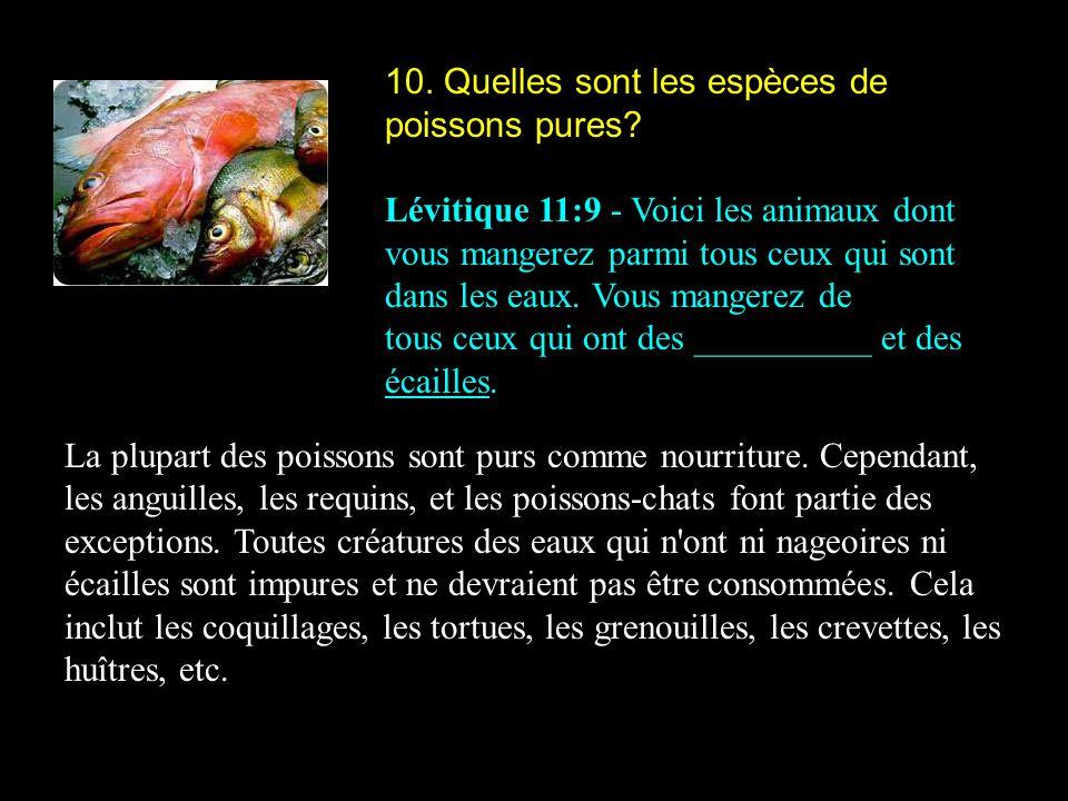 10. Quelles sont les espèces de poissons pures? Lévitique 11:9 - Voici les animaux dont vous mangerez parmi tous ceux qui sont dans les eaux. Vous man