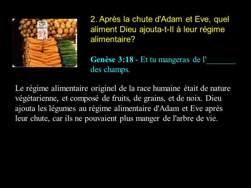 2. Après la chute d'Adam et Eve, quel aliment Dieu ajouta-t-Il à leur régime alimentaire? Genèse 3:18 - Et tu mangeras de l'_______ des champs. Le rég