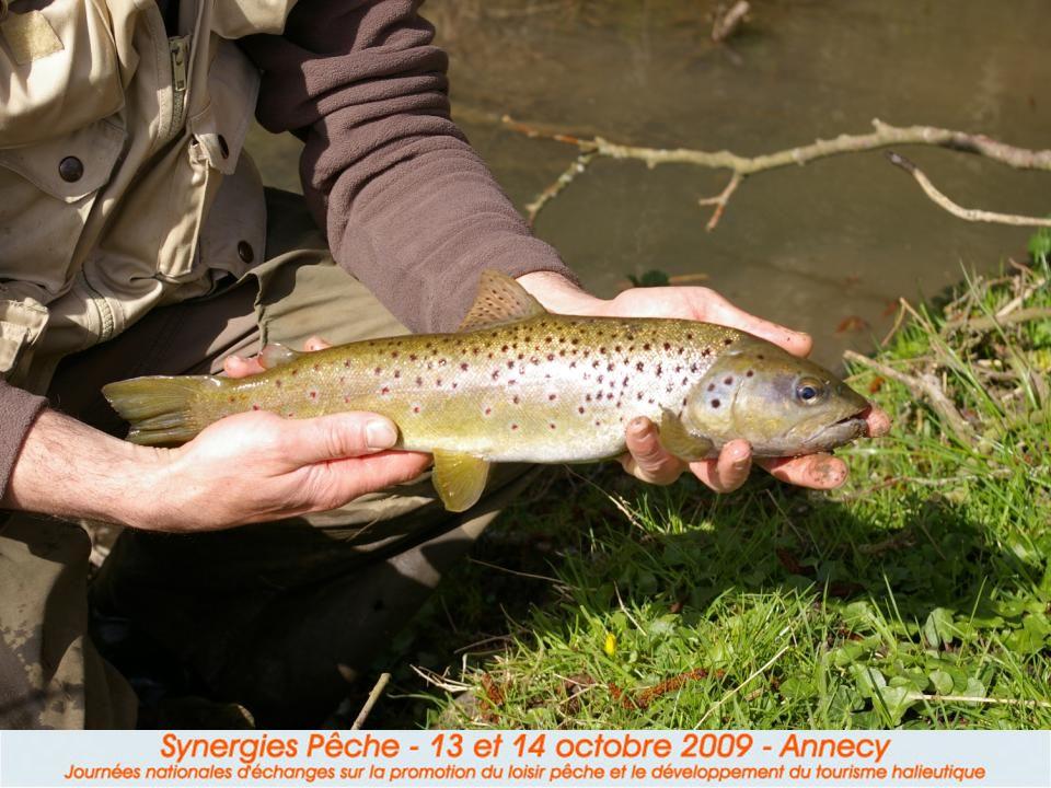 III. Les produits « poissons (attractifs) » Personne nimaginerait organiser un voyage pêche pour aller « taquiner le goujon ». Pourquoi une espèce est