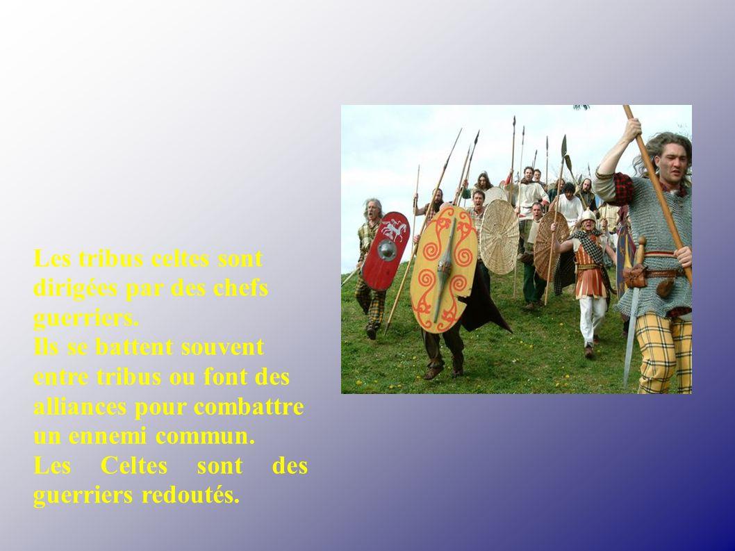 Les tribus celtes sont dirigées par des chefs guerriers. Ils se battent souvent entre tribus ou font des alliances pour combattre un ennemi commun. Le