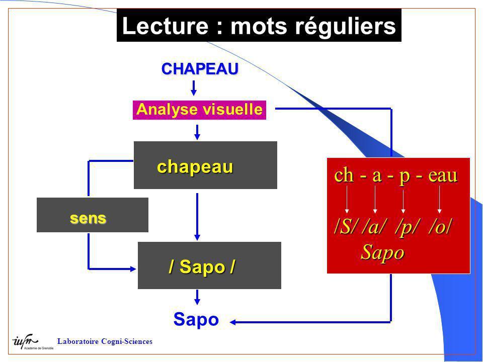 Lecture : mots réguliers CHAPEAU sens sens chapeau / Sapo / Analyse visuelle Sapo ch - a - p - eau /S/ /a/ /p/ /o/ Sapo Sapo Laboratoire Cogni-Science
