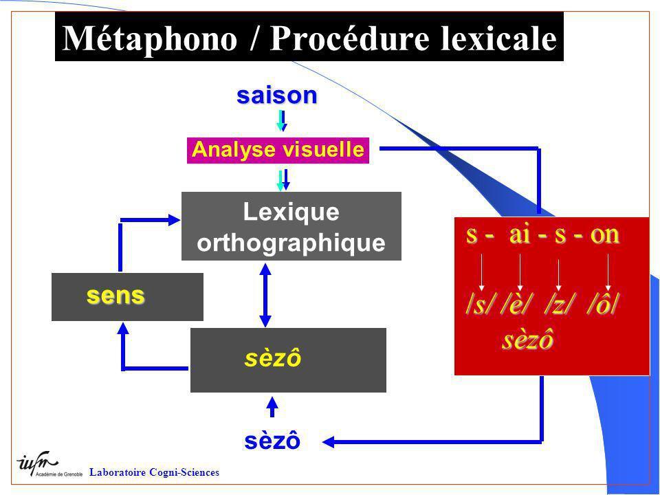 Métaphono / Procédure lexicale Création trace Laboratoire Cogni-Sciences Analyse visuelle saison saison sèzô s - ai - s - on /s/ /è/ /z/ /ô/ sèzô sèzô