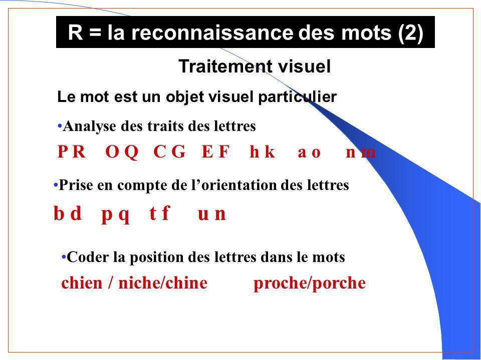 R = la reconnaissance des mots (2) Traitement visuel Le mot est un objet visuel particulier Analyse des traits des lettres P RO QC GE Fh ka on m Prise en compte de lorientation des lettres b dp qt fu n Coder la position des lettres dans le mots chien / niche/chineproche/porche