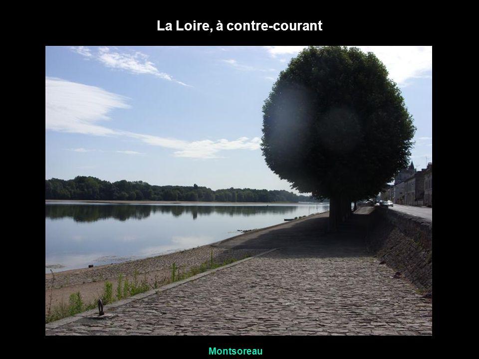 La Loire, à contre-courant Montsoreau