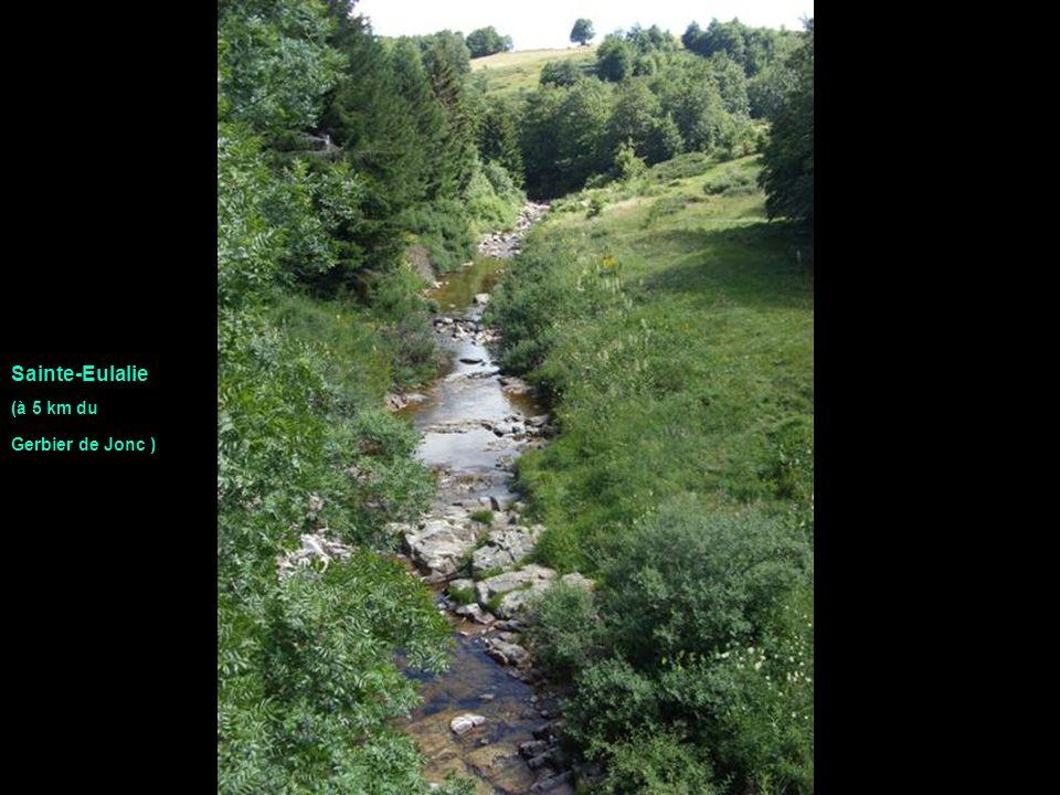 Sainte-Eulalie (à 5 km du Gerbier de Jonc )