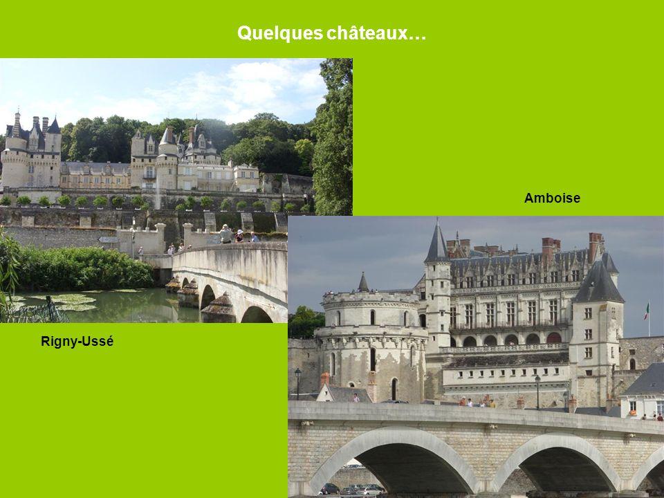 Quelques châteaux… Rigny-Ussé Amboise