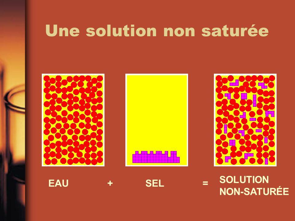 Une solution non saturée EAU + SEL = SOLUTION NON-SATURÉE