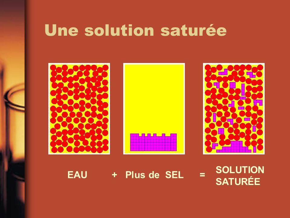Une solution saturée EAU + Plus de SEL = SOLUTION SATURÉE