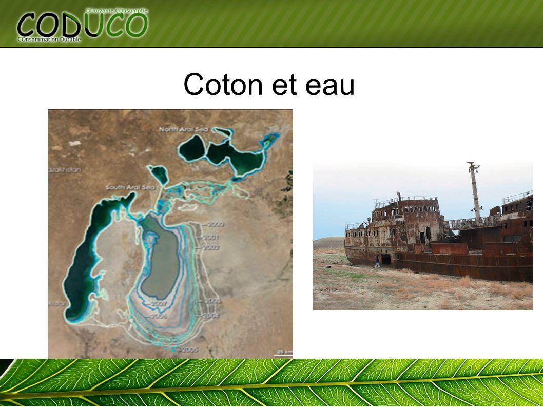 Coton et eau