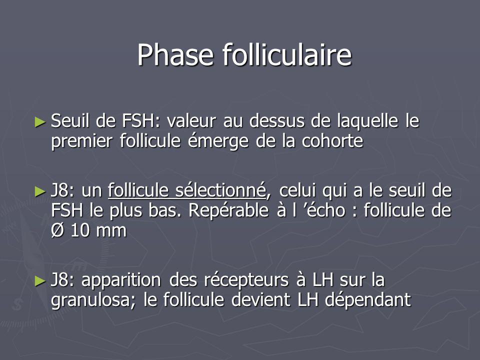 Phase folliculaire Seuil de FSH: valeur au dessus de laquelle le premier follicule émerge de la cohorte Seuil de FSH: valeur au dessus de laquelle le premier follicule émerge de la cohorte J8: un follicule sélectionné, celui qui a le seuil de FSH le plus bas.