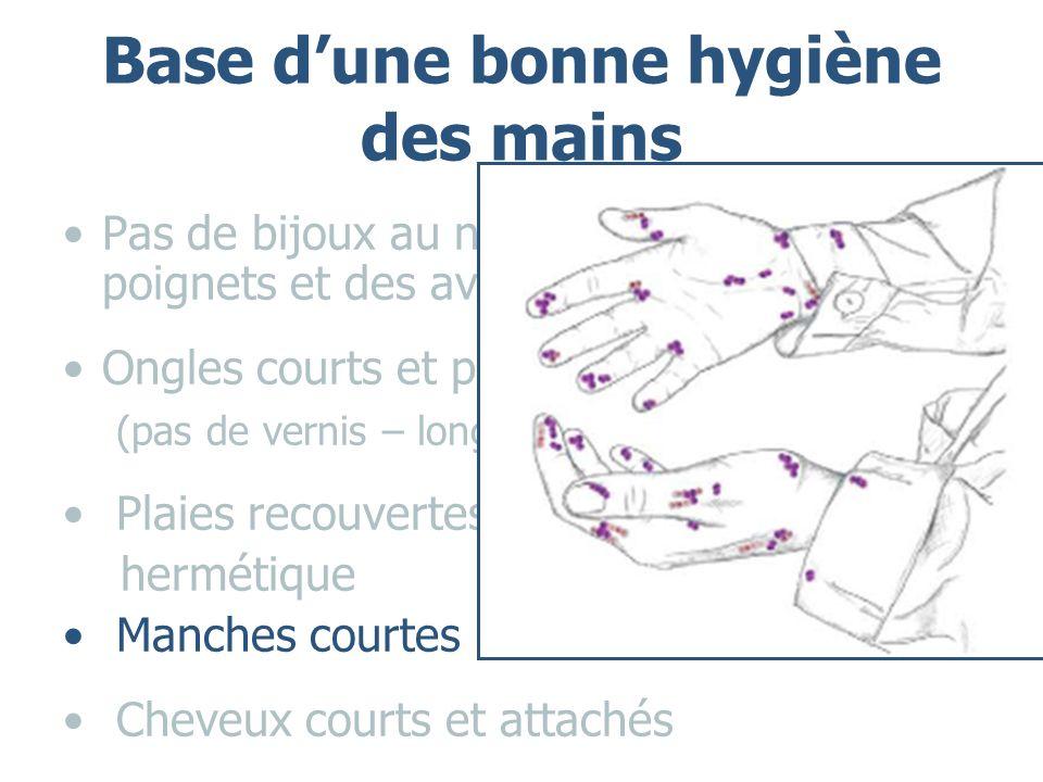 Base dune bonne hygiène des mains Pas de bijoux au niveau des mains, des poignets et des avants – bras Ongles courts et propres (pas de vernis – longs