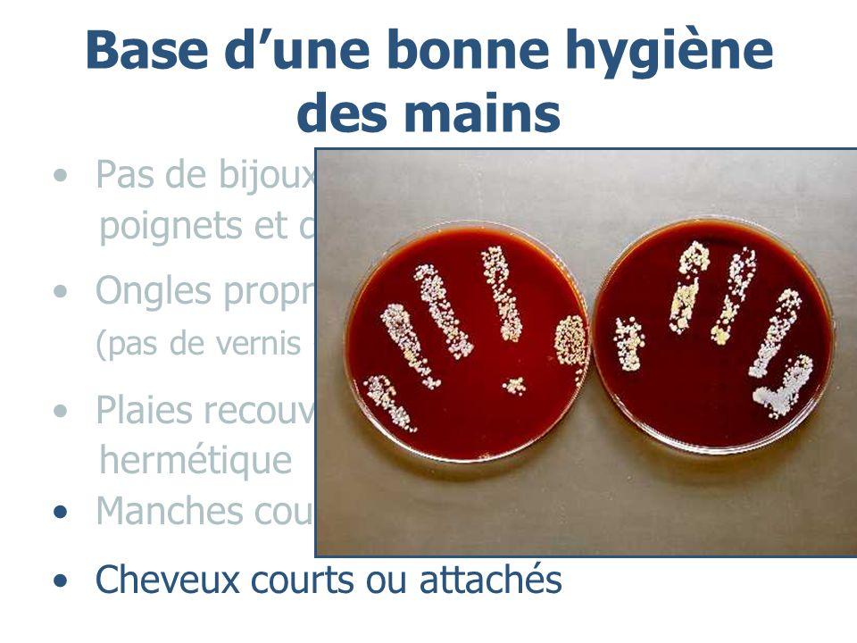 Base dune bonne hygiène des mains Pas de bijoux au niveau des mains, des poignets et des avants - bras Ongles propres et courts (pas de vernis – longs