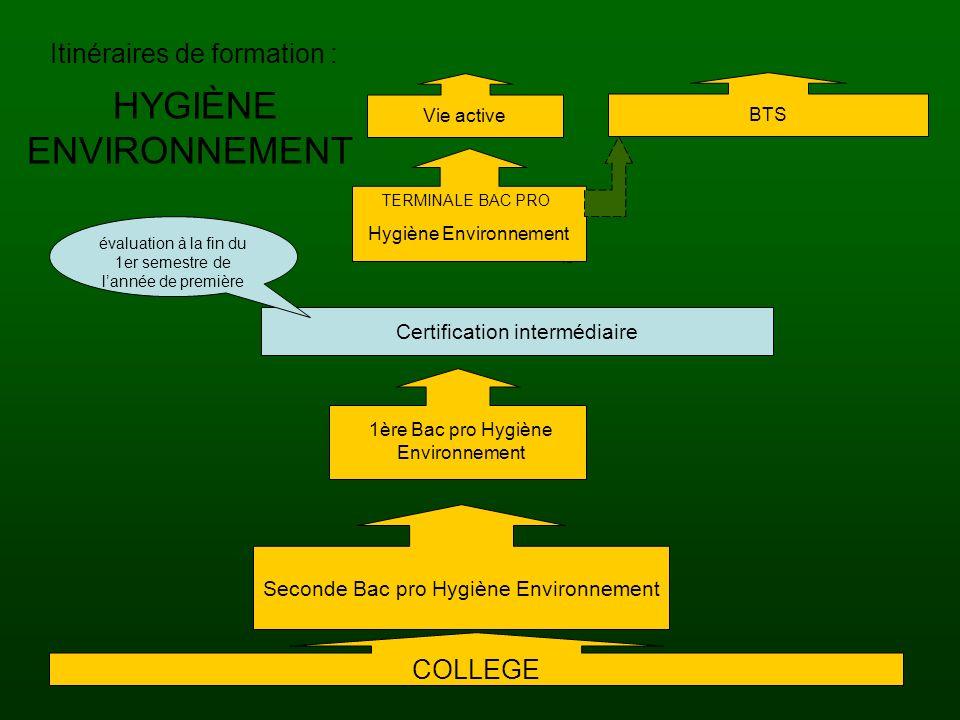 20/06/201015 HYGIÈNE ENVIRONNEMENT TERMINALE BAC PRO Hygiène Environnement Itinéraires de formation : Seconde Bac pro Hygiène Environnement COLLEGE BT