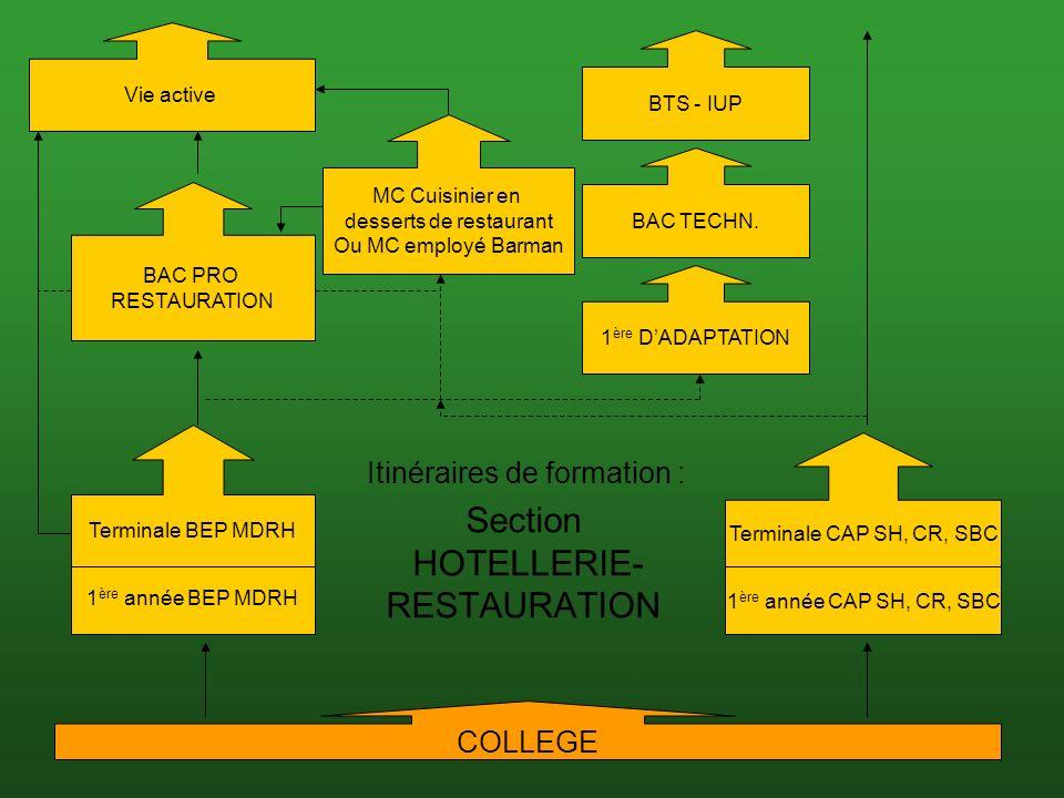 20/06/201018 Section HOTELLERIE- RESTAURATION BAC PRO RESTAURATION Terminale CAP SH, CR, SBC 1 ère année CAP SH, CR, SBC Itinéraires de formation : Terminale BEP MDRH 1 ère année BEP MDRH COLLEGE BTS - IUP 1 ère DADAPTATION BAC TECHN.