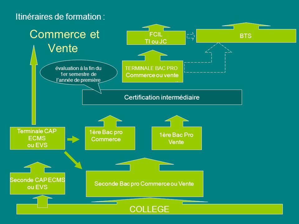 20/06/20104 Commerce et Vente TERMINALE BAC PRO Commerce ou vente Itinéraires de formation : Seconde Bac pro Commerce ou Vente COLLEGE BTS 1ère Bac pr