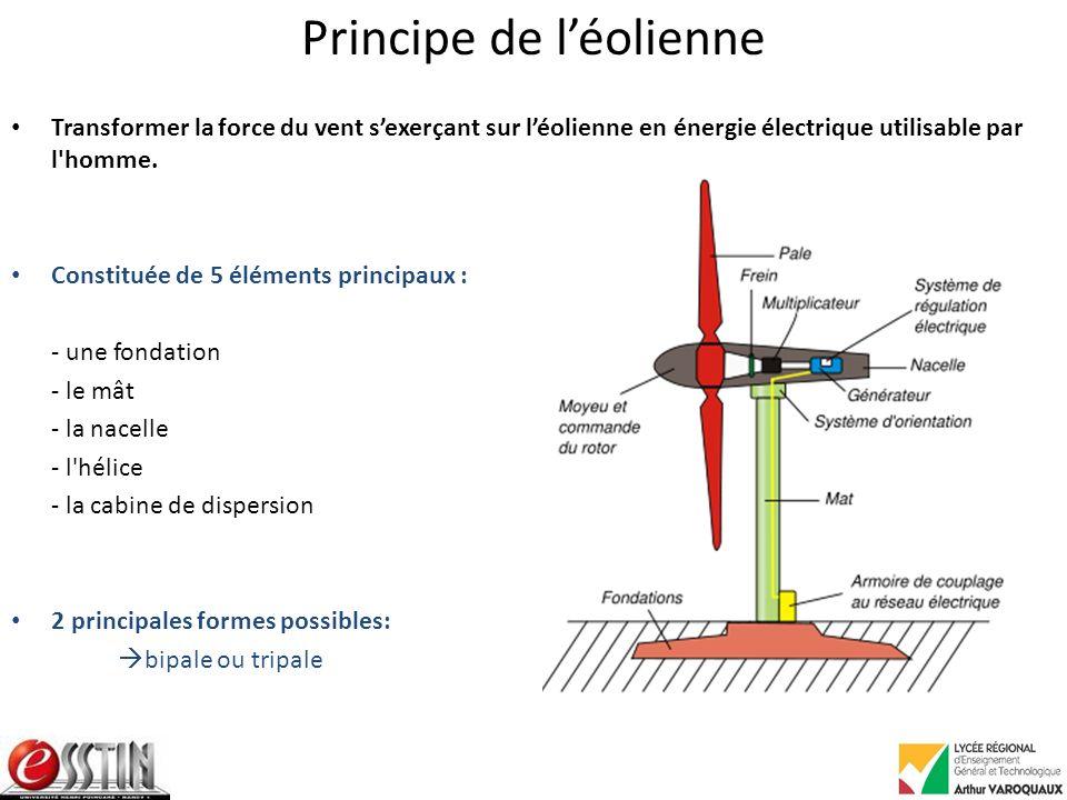 Principe de léolienne Transformer la force du vent sexerçant sur léolienne en énergie électrique utilisable par l homme.