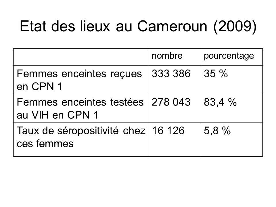 Etat des lieux au Cameroun (2009) nombrepourcentage Femmes enceintes reçues en CPN 1 333 38635 % Femmes enceintes testées au VIH en CPN 1 278 04383,4 % Taux de séropositivité chez ces femmes 16 1265,8 %