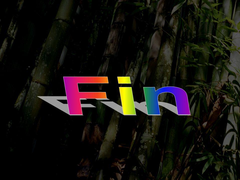 Fleur 7 Cliquez sur le bouton correspondant à la plante que vous voyez, le son que vous entendrez vous dira si vous avez la bonne réponse cana frangip